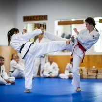 Taekwon-do Youth | Adult